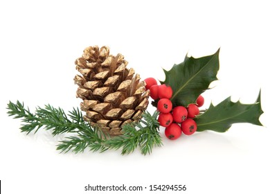 Holly berry leaf sprig with gold pine cone and fir over white background.