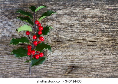 Holly branch with fresh green leaves and red berries close up  on wooden background