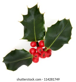 Holly leaf sprig with red berry cluster over white background.