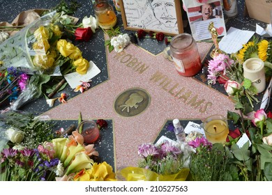 HOLLYWOOD, CA - AUGUST 12, 2014: Robin Williams' star on the Hollywood Walk of Fame is surrounded by flowers and various memorial tributes left by fans on August 12, 2014.