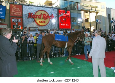 "HOLLYWOOD, CA- SEPTEMBER 30: Horse used as ""Secretariat"" arrives at the premiere of the Walt Disney Pictures film the 'Secretariat', at The El Capitan Theater in Hollywood on September 30, 2010."