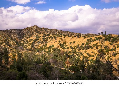 Hollywood Hills and Griffith Park. Attractions in Los Angeles
