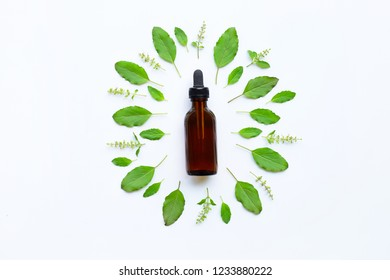 Holy Basil Essential Oil in a Glass Bottle with Fresh Holy Basil