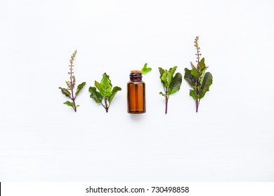 Holy Basil Essential Oil , with Holy Basil  Leaves  on white wooden background.