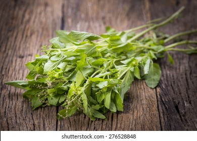 Holy Basil leaves on a wooden table