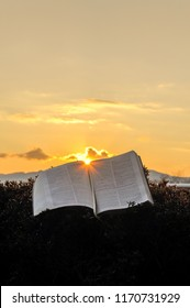 The Holy Bible (Word of God) opened during a glorious golden sunset. Sun in the center of the Bible. Background with clouds and Bright sun and intense orange and gold color. Vertical shot.