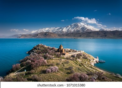 'Armenian Holy Cross Cathedral' surrounded by tree in blossom, in a middle of 'Akdamar Island' (Akdamr Adasi)