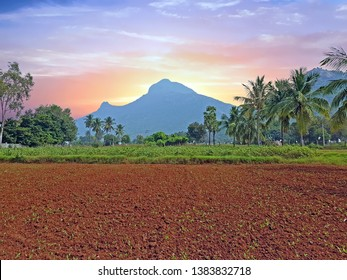 The holy mountain Arunachala in Tiruvanamalai Tamil Nadu India at sunset
