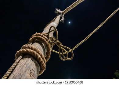 Holy wood being erected at night of full moon during Gajan and Charak Puja - a Hindu festival. Lord Shiva, Neel and Dharmathakur are worshipped by worshipping this wood.