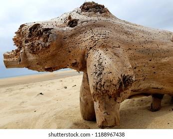 Holz Strand abstrakt