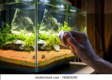 Home aquarium cleaning using magnetic fish tank cleaner. Man scrubbing glass of home decorative aquarium