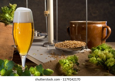 Home Brewing of Beer. Still life with hops, beer and barley.