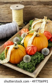Home decoration with pumpkins, moss and physalis.