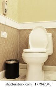 Home flush toilet (toilet bowl, paper)