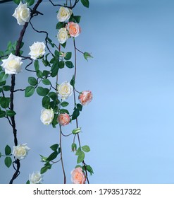 Home garden. Artificial vines with silk roses on a blue background