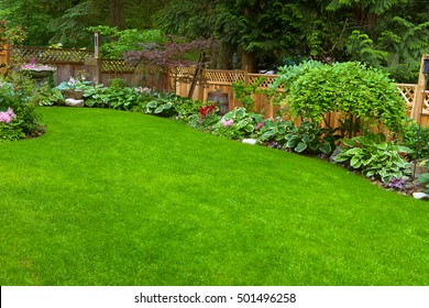 Home Garden. A beautifully arranged and trimmed home garden.