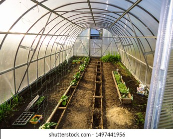 Home garden greenhouse. Interior view. Carbonate coating on steel frame.