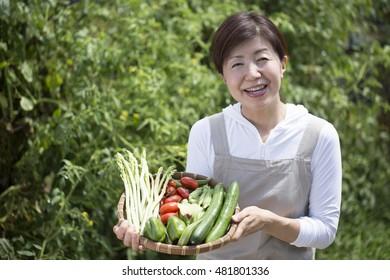 Home garden, woman, vegetables
