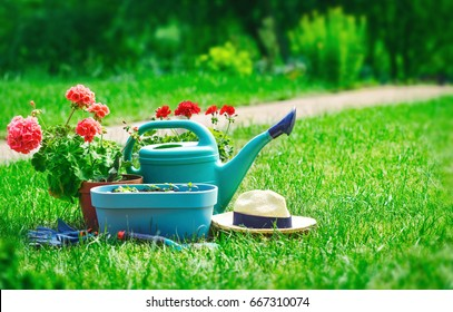 Home gardening and flower-growing still-life of flower in pot with watering can garden tools on green grass.