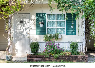 Home gardening with gate, window and blooming flowers.