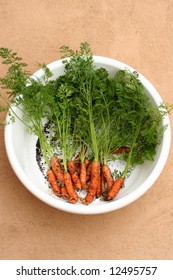 Home grown baby carrots