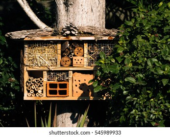 A home for insects