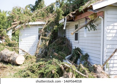 Home insurance. insurance. Storm damage.Roof damage from tree. hurricane storm.A storm causes a white tree to fall and rip through the roof of a house. tree falls. tree down. trees after storm.