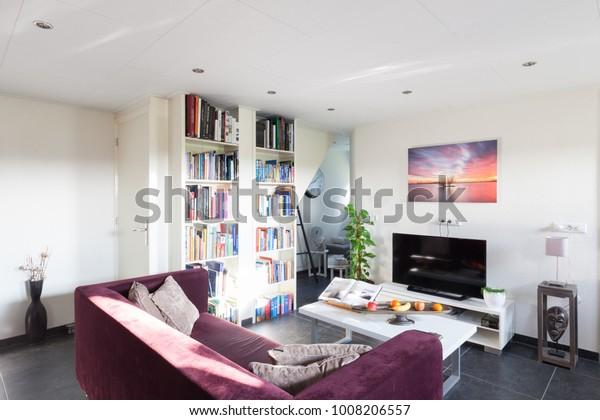 Home Interior Studio Apartment Stock Photo (Edit Now) 1008206557