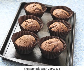Home made chocolate cupcakes straight from the oven, on a metal tray.