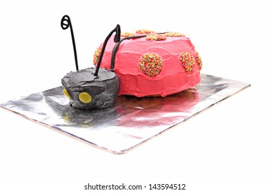 Home made ladybird or beetle birthday cake on a silver foil tray isolated on a white background using clipping path.