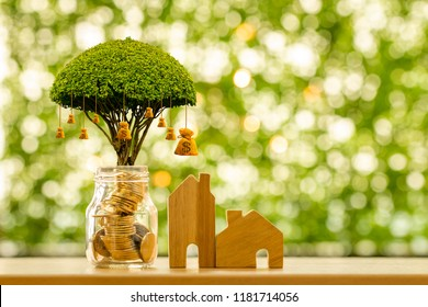 Home model and bottle bank and coin with growing value and money bag of tree as destinations put on the table in the public park, Business investment and loan for real estate or buy house concept.