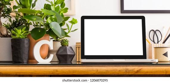 Home office interior design wooden desk with laptop screen mock up, frame, plants in design pots.