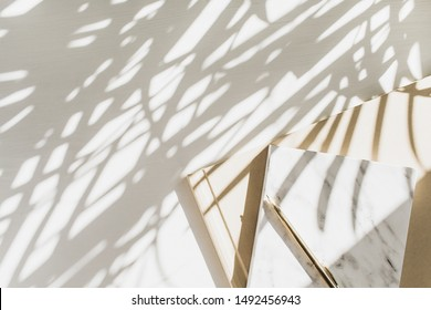 Home office workspace background with notebook on white background with plant shadow. Flat lay, top view minimal stylish lady boss business lifestyle concept.