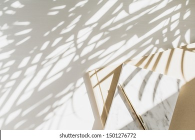 Home office workspace background with notebook on white background with plant shadow. Flat lay, top view minimal lady boss lifestyle concept.