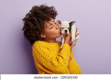 Home pets concept. Beautiful female mistress of pedigree dog kisses it with love, cares about animal, has cheerful mood, chills with bulldog, wears yellow jumper, models over purple background.