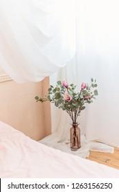 Home plants in Scandinavian bedroom