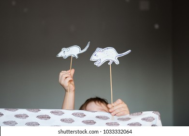 A home show. The child plays with paper animals on sticks.