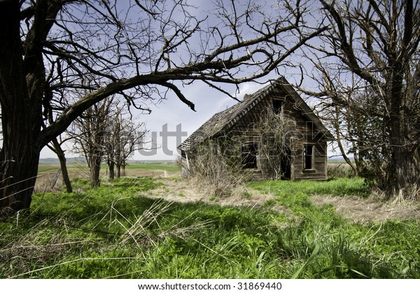 Home that has been abandoned and run down.All the trees have all died grass is over grown.