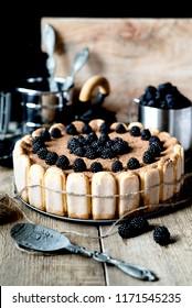 home tiramisu with blackberries