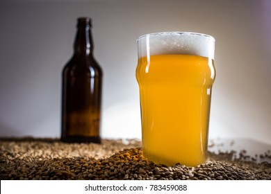 Homebrew Blonde Pint and empty bottle of Beer on Pislner Malt Grain over Bright Background in Studio