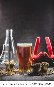 Homebrew Honey Brown Beer, Different Barley and Brewing Equipment in Studio with Dramatic Light