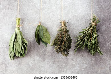 Homegrown and aromatic herbs on rustic background.Set of culinary herbs. Green growing sage, oregano, thyme, basil, mint and oregano.