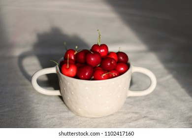 Homegrown cherries in a beautiful ceramic bowl. Selective focus.