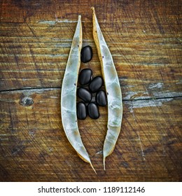 Homegrown dried black beans with a rustic board background