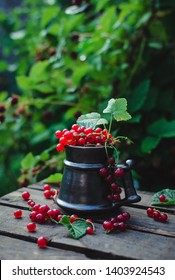 Homegrown red currants in an antique cup with beautiful natural background!