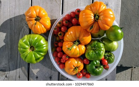 Homegrown ripe and juicy heirloom tomatoes