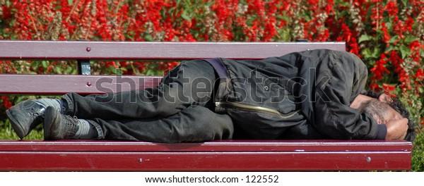homeless in garden