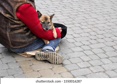 A homeless man sitting on the sidewalk warms the dog in his arms.  concept of poverty, love and warmth