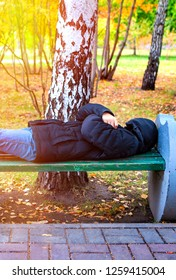 Homeless Person sleep on the Bench in the Autumn Park