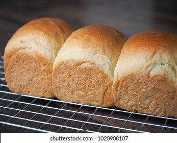 Homemade Bakery : a loaf of bread on wood.